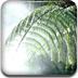 竹林风拼图