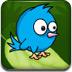 蓝翎鸟回巢