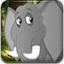 逃离大象森林