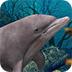 寻找深海宝藏